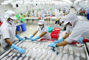 Vệ sinh an toàn thực phẩm, sử dụng đồ bảo hộ khi chế biến